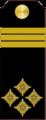 Narednik-Vodnik I klase 1908-1945.png