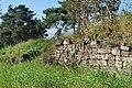 Naturschutzgebiet Heulerberg (6).jpg