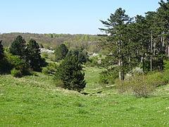 Naturschutzgebiet Lange Dreisch - Osterberg (15).JPG