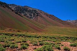 Near Aconcagua.jpg