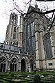 Neude Janskerkhof en Domplein, Utrecht, Netherlands - panoramio (14).jpg