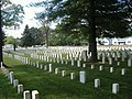 New Albany National Cemetery graves.JPG