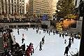 New York City Snow Day, Christmas Day 2008 (3137378188).jpg