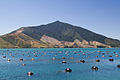 New Zealand Mussel farm-6382.jpg