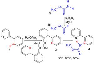 Nitrene - Nitrene amidation