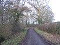 Northbrook Road - geograph.org.uk - 651749.jpg