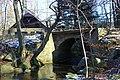 Nový rybník - Cerhonice (004).jpg