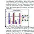 OLE-demonstratie - een grafiek in een tekstdocument.png