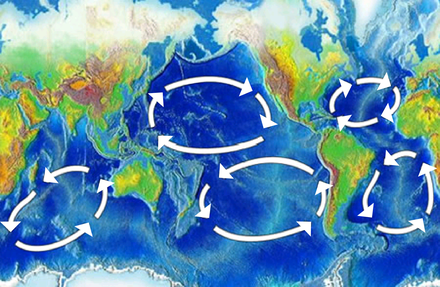 Map of the five major oceanic gyres Oceanic gyres.png