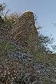 Ogijima - 男木島 (6994337295).jpg