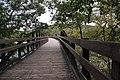 Ohiopyle State Park River Trail - panoramio (126).jpg