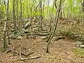 Oike mine ruins03.jpg