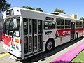 Old MTT bus at Perth Cultural Centre 2017 1.jpg