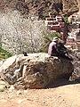 Old Man On Old Rock, Ourika Mountain.jpg