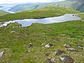 On Cruach Tuirc - geograph.org.uk - 489559.jpg