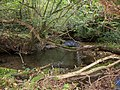 On the edge of Berrydown Wood - October 2014 - panoramio.jpg