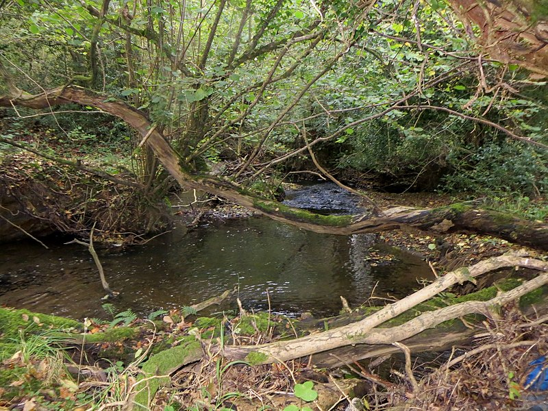 File:On the edge of Berrydown Wood - October 2014 - panoramio.jpg
