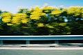 On the road (Unsplash).jpg