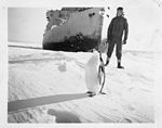 Operation Windmill Expedition Member with Penguin (5243256631).jpg