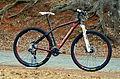Orbea Alma 29er H50 2.jpg