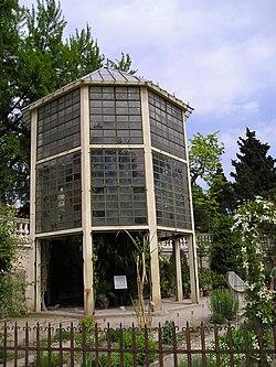 Serra ottagonale contenente la Palma di Goethe (Chamaerops humilis). Orto botanico di Padova