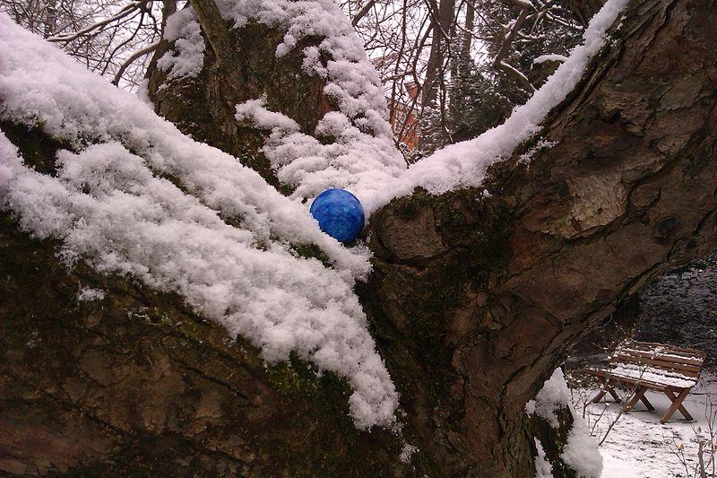 File:Osterei auf Baum im Botanischen Garten Jena - IMAG5299.jpg