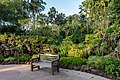 Outdoor wooden bench in Singapore Botanic Gardens at golden hour.jpg