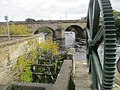 Overgrowth in recovered mill workings on the waterfront, Wetherby (16th October 2020).jpg