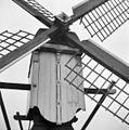 Overzicht - Leiden - 20137638 - RCE.jpg