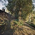 Overzicht kloostermuur en paden - Steijl - 20341985 - RCE.jpg
