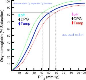 Oxygen–hemoglobin dissociation curve - Hemoglobin saturation curve.