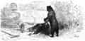 PL Jean de La Fontaine Bajki 1876 502.png