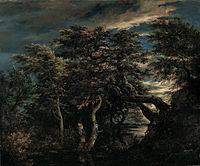 Pantano en un bosque al anochecer - Ruisdael.jpg