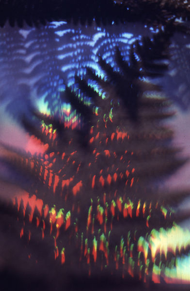 File:Paolo Monti - Serie fotografica - BEIC 6359537.jpg