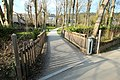 Parc du Val Fleury à Gif-sur-Yvette le 22 mars 2016 - 12.jpg