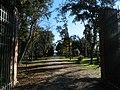 Parco della Versiliana.jpg