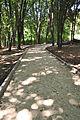 Park-Zdorovia-remont-15070301.jpg