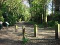 Parkland Walk - geograph.org.uk - 1589565.jpg