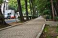 Parque España - Ciudad de México - 22 -.jpg