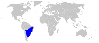 Picazuro pigeon - Image: Patagioenas picazuro range
