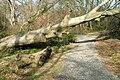 Path in Rosecroft Wood - geograph.org.uk - 716812.jpg