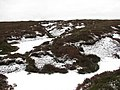 Peat haggs on Ton Eich - geograph.org.uk - 113710.jpg