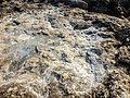 Pedra do Sal, detalhe rochas.jpg