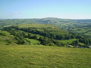 Llanddulas Limestone and Gwrych Castle Wood