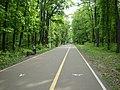 Penza Olimpic path.JPG