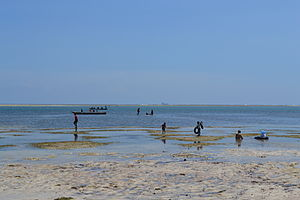 People bathing as viewed from Nyali Beach next to Mombasa Beach Hotel during low tide and still conditions in Mombasa, Kenya 2.jpg