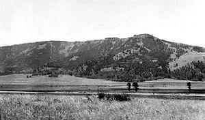 Specimen Ridge - Image: Petrified Forest Specimen Ridge YNP1938