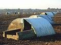 Pig farm, Ewelme - geograph.org.uk - 1082249.jpg
