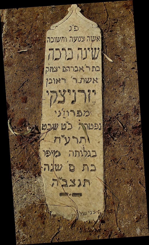 חלקת מגורשי תל אביב ויפו 1917