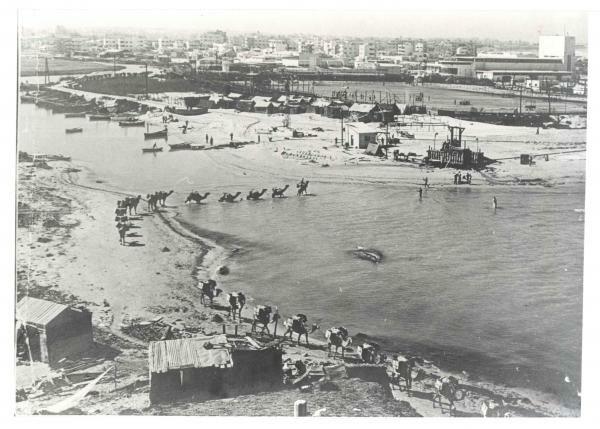 PikiWiki Israel 687 Economy of Israel שפך נהר הירקון